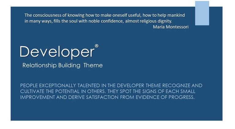 Developer Relationship Building Theme